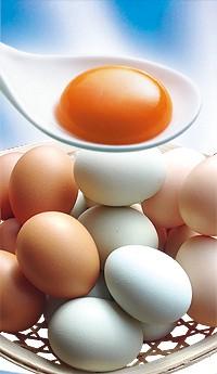 土雞蛋(每盒10顆裝)